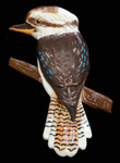 kookaburra wall plaque
